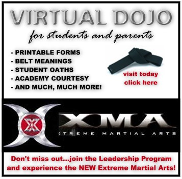 Visit the virtual dojo today!